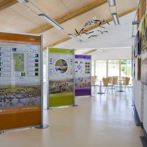 BBOWT visitor centre modular displays stands